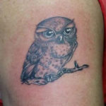 small tattoo of a cure owl by Dutchink