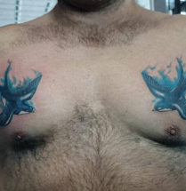 blauwe zwaluwen tattoo geplaatst op de borst