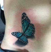 Vlinder op zij