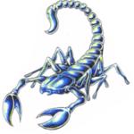 3D Schorpioen voorbeeld voor tattoo