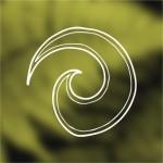 Koru, staat voor een nieuw begin, groei en harmonie.
