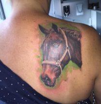 Paard op schouder