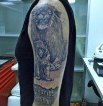 Leeuw met jonkie op bovenarm