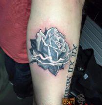Roos op onderarm