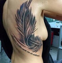 Veer met vogels en teksten op rug
