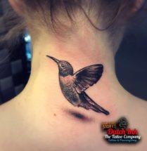 Kolibrie op nek
