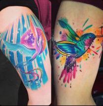 Fel gekleurde vogels