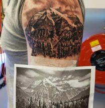 Portret van bergen